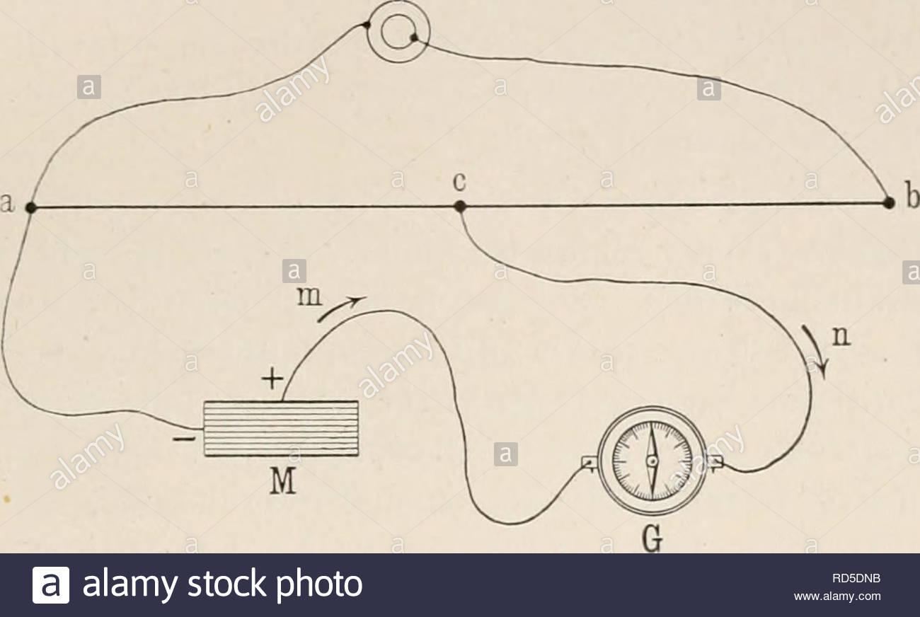 elektrobiologie lehre von den elektrischen vorgngen im organismus auf moderner grundlage dargestellt electrophysiology einen strom in demselben sinne geben wrde hiermit war von du bois eeymond matteuccische ansicht da das ganze innere des muskels negativ gegen oberflche wre widerlegt i strme des ganzen muskels setzen sich aus denen jder einzelnen muskelfasern zusammen potentiale des ganzen muskels sind aber denen der einzelnen fasern gleich wenn se alle sich in gleichem zustande befinden kette des ganzen muskels besteht aus den nebeneinander geschalt RD5DNB