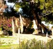Alten Garten Neu Anlegen Elegant Garten Zeichnung Inspirierend 48 Elegant Garden Bee