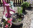 Alter Stuhl Als Gartendeko Genial Lijo Lisadropsstella Auf Pinterest
