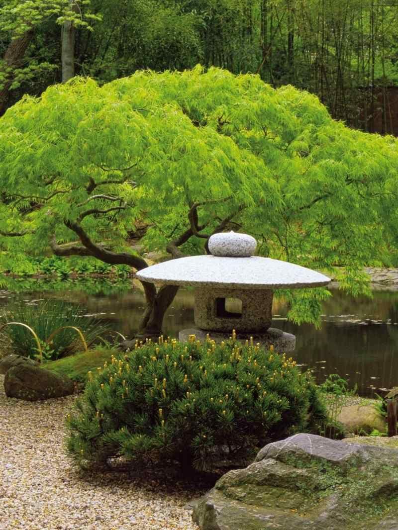 Asiatischer Garten Inspirierend 550 Pins Zu Garten Für 2019