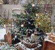 Außendeko Best Of Weihnachtsdekoration Außendekoration Im Winter