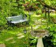 Ausgefallene Gartendeko Schön Stock
