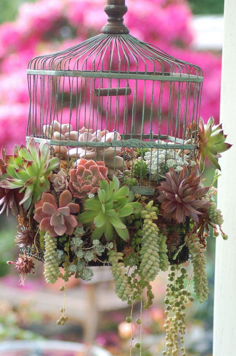 Ausgefallene Gartendeko Selber Machen Einzigartig Bird Cage Garden