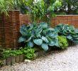 Ausgefallene Gartendeko Selber Machen Inspirierend Kreative Dekoration Für Sichtschutzwand