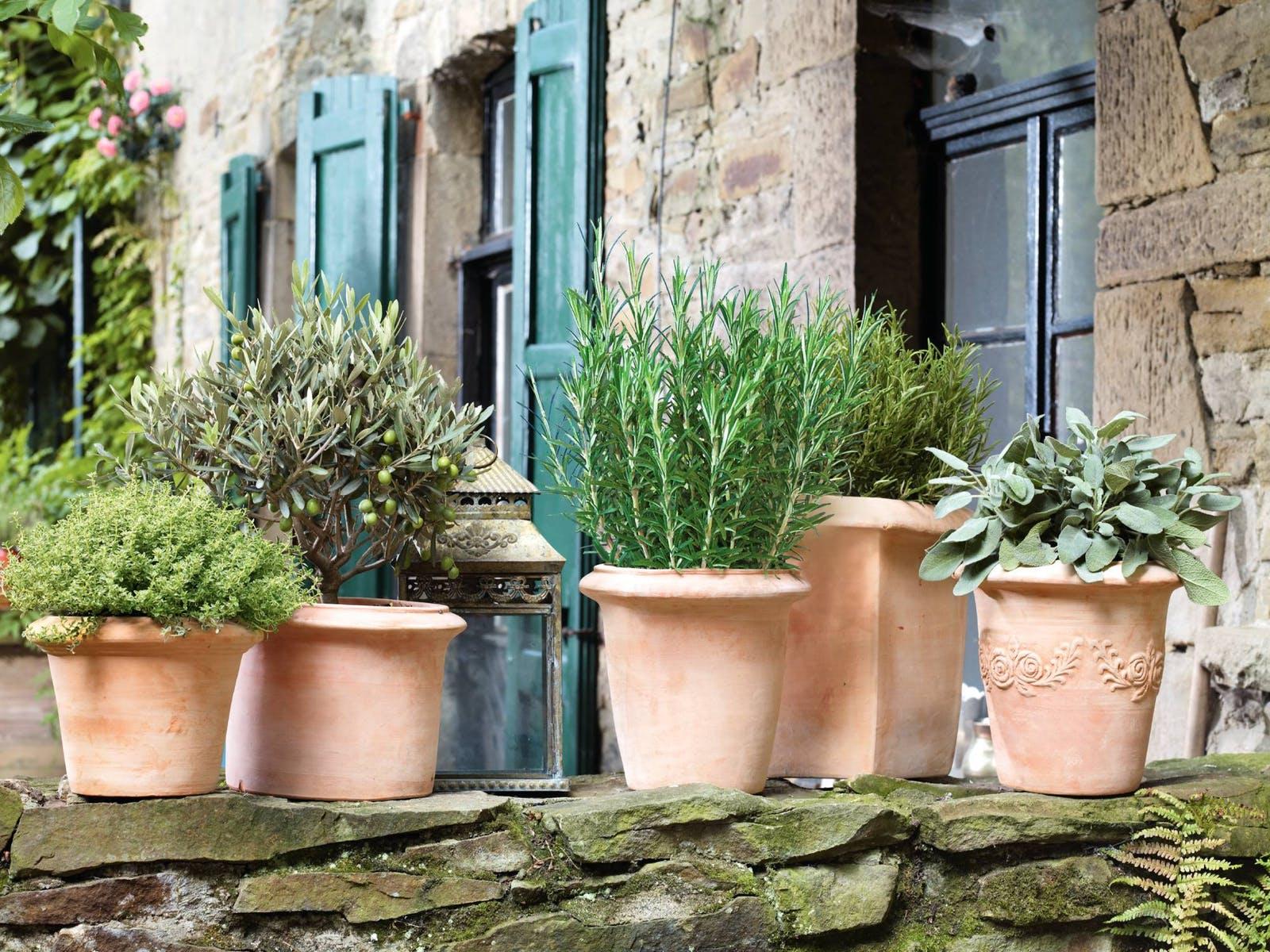balkongestaltung stil mediterran pflanzen