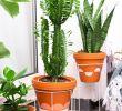 Balkon Ideen Luxus Pflanzenständer Selbstgemacht Easy Hack Für Den Balkon