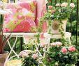 Balkon Verschönern Schön Balkongestaltung Und Garten Trends Für Das Jahr 2015