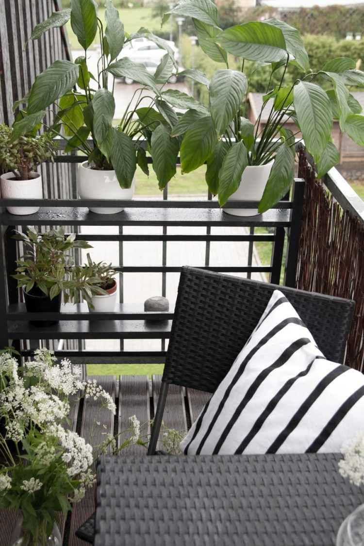 Balkongestaltung Ideen Genial Schwarz Weiß Und Frischen Pflanzen Und Blumengefäßen Am