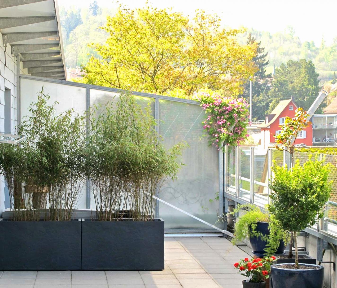 42 inspirierend balkongestaltung schmaler balkon balkongestaltung kleiner balkon balkongestaltung kleiner balkon 4