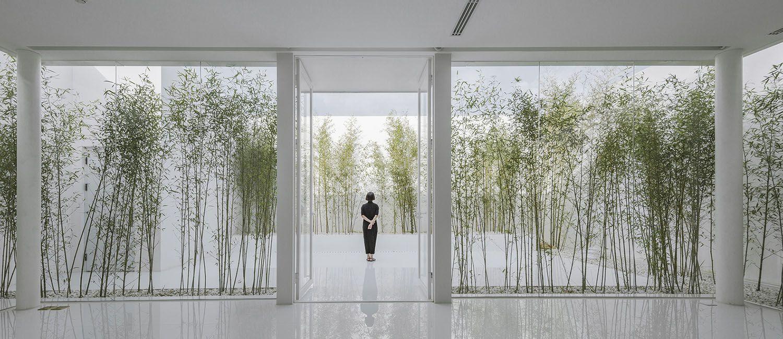 Bambusgarten Einzigartig V Studio S Rooftop Bamboo Garden