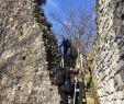 Bambusgarten Elegant Hohenems 2020 Best Of Hohenems Austria tourism Tripadvisor