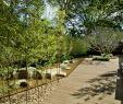 Bambusgarten Genial Pinterest – Пинтерест