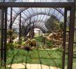 Bastelideen Aus Holz Für Den Garten Neu Allgemein