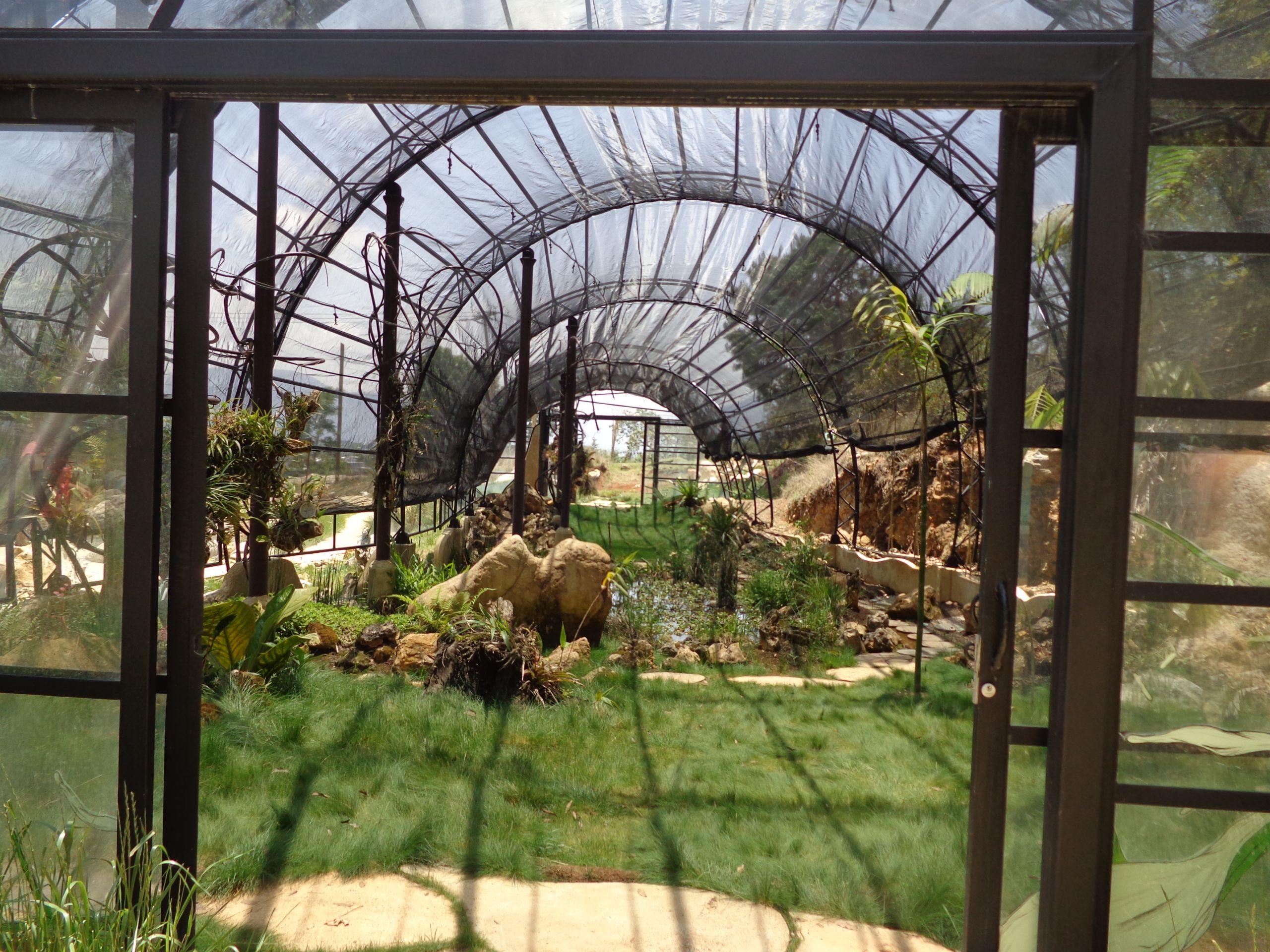 das neue gewc3a4chshaus im orchideengarten moxviquil