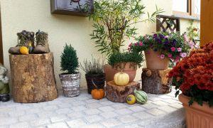 24 Schön Baumstamm Dekorieren Garten