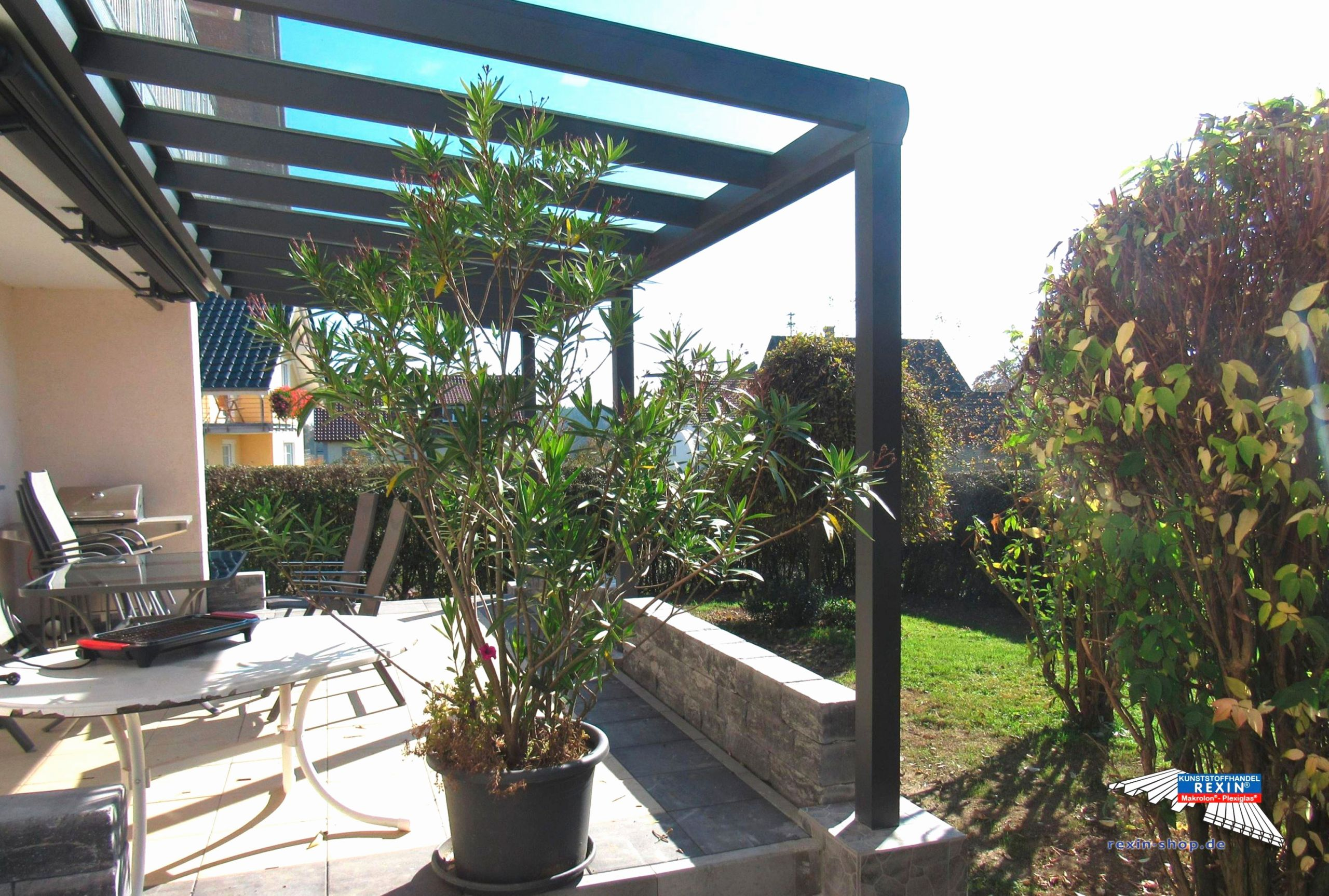 Baumwurzel Dekorieren Elegant Luxus Garten Lounge