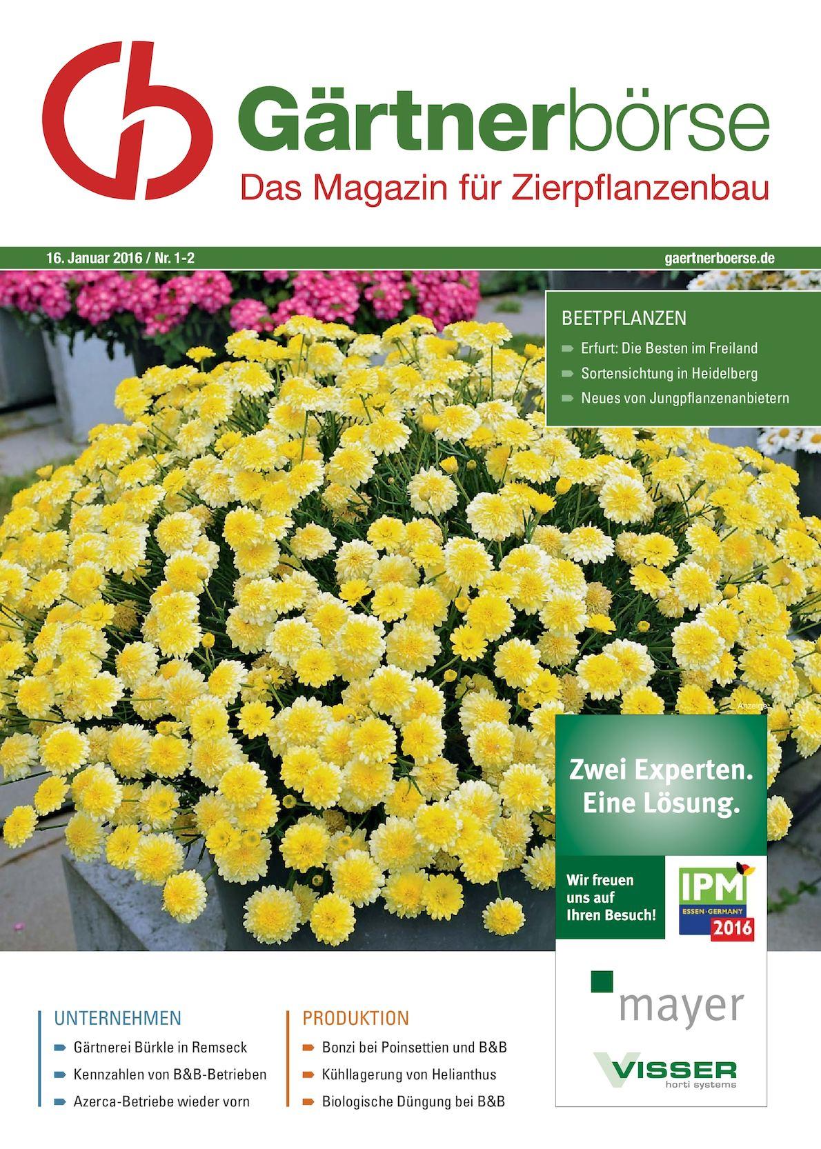 Beetbepflanzung Ideen Elegant Calaméo Gaertnerboerse Evt