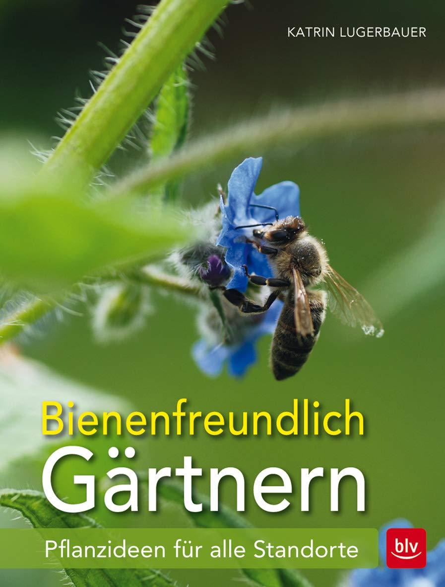 Beetbepflanzung Ideen Luxus Bienenfreundlich Gärtnern Pflanzideen Für Alle Standorte