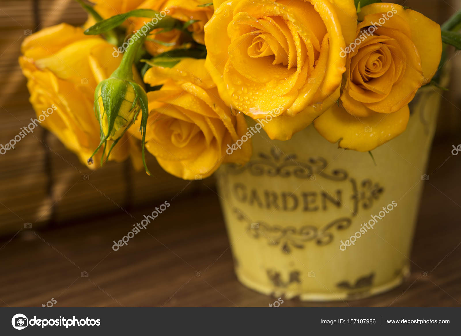 depositphotos stock photo yellow buds of roses in