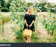 Bilder Garten Best Of Lifestyle Portrait Od Unusual Odd Beautiful Stock