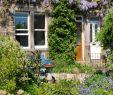 Bilder Garten Luxus Lush Flowering Garden In Front Of Row Od Terraced Houses
