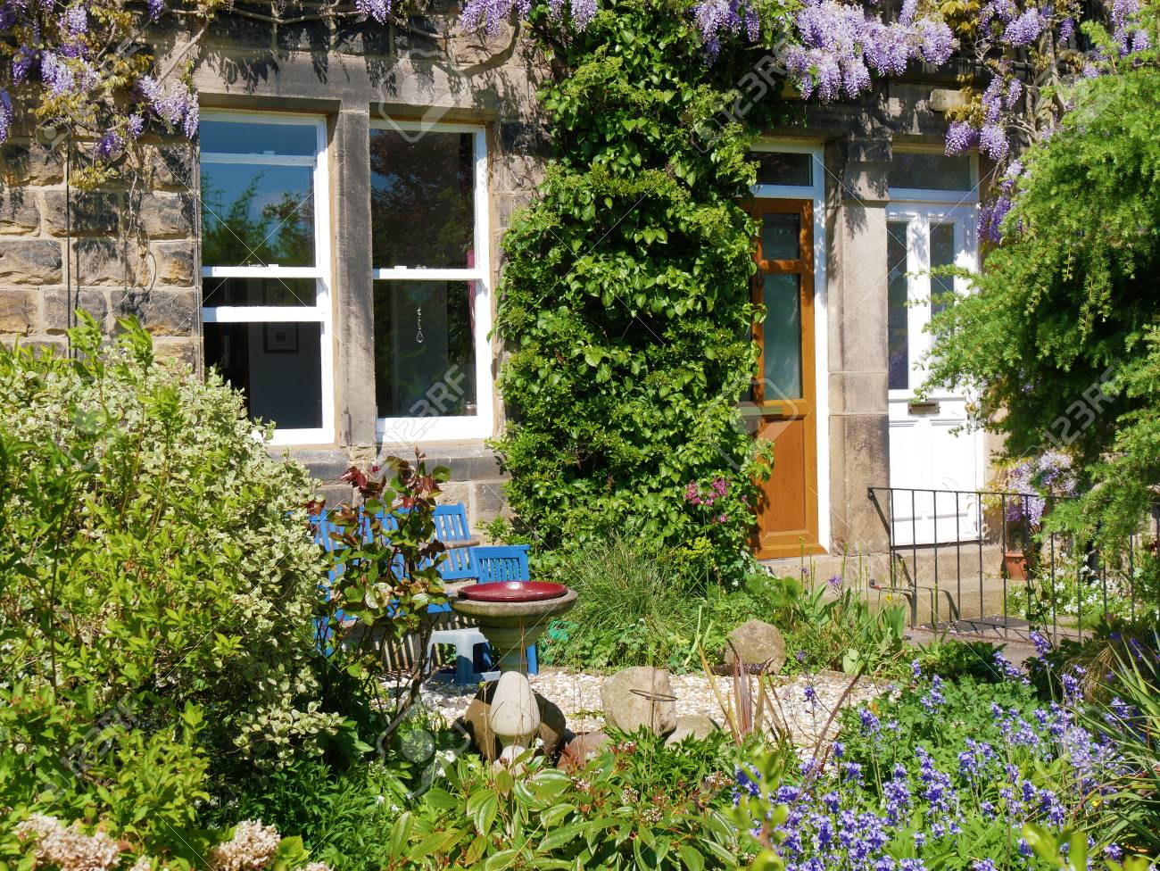 lush flowering garden in front of row od terraced houses