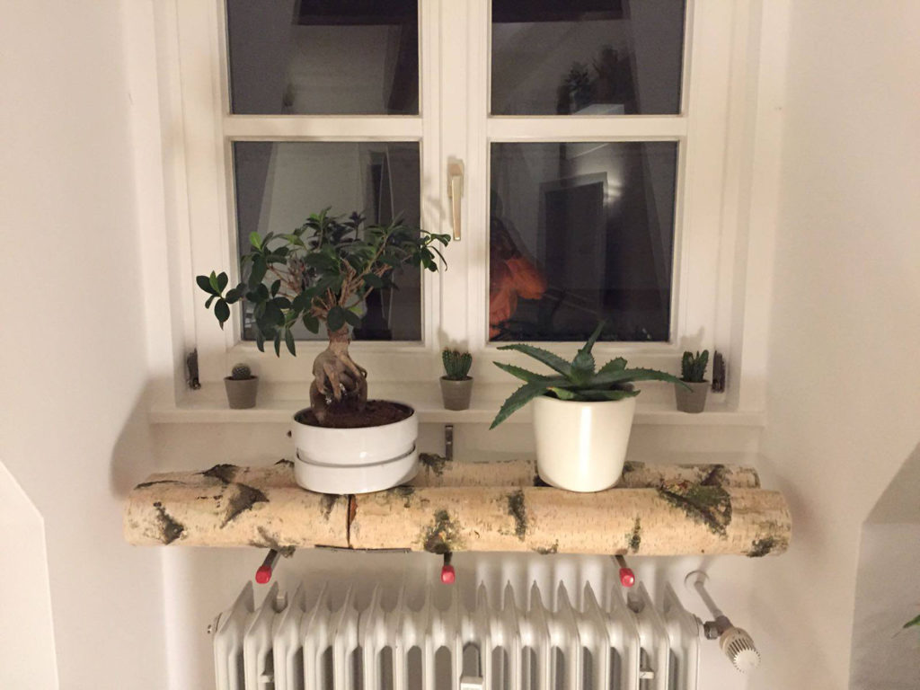 birkenstamm pflanzenhalterung