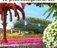 Blumen Garten Bilder Best Of Der Miracle Garden In Dubai ist Der Weltweit Größte