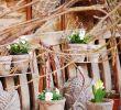 Buddha Deko Garten Einzigartig Frühling Garten Pflanzen Buddha Vintage & Shabby
