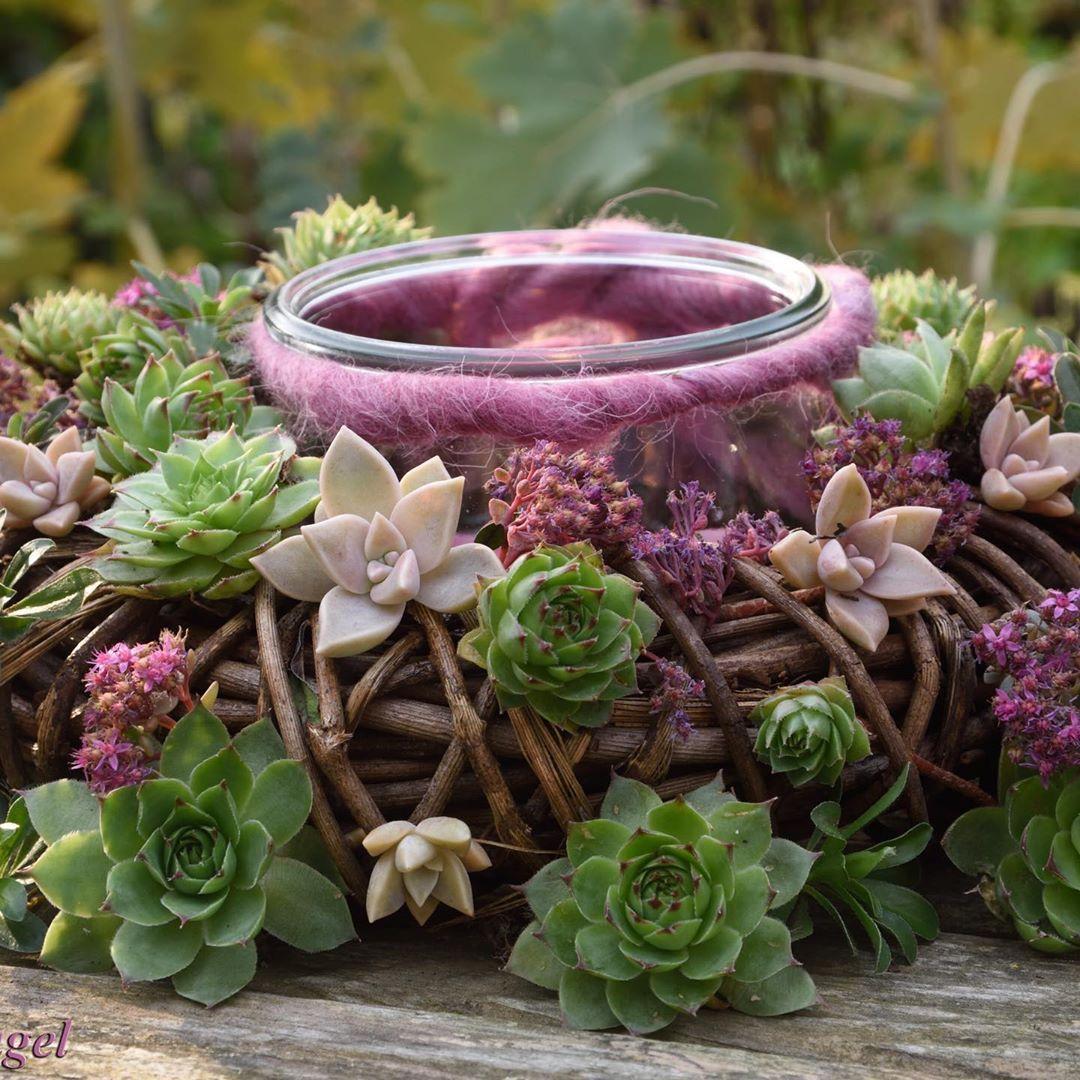 Chinesische Gartendeko Luxus Wurzisammlung Gardendecoration Gardeninspiration Garden