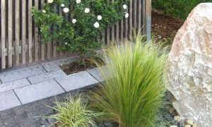 32 Elegant Cortenstahl Garten Online Bestellen