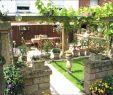Cottage Garten Anlegen Schön Sichtschutz Garten Pflanzen — Temobardz Home Blog