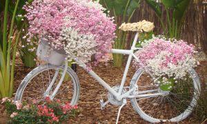 20 Frisch Deko Fahrrad Garten