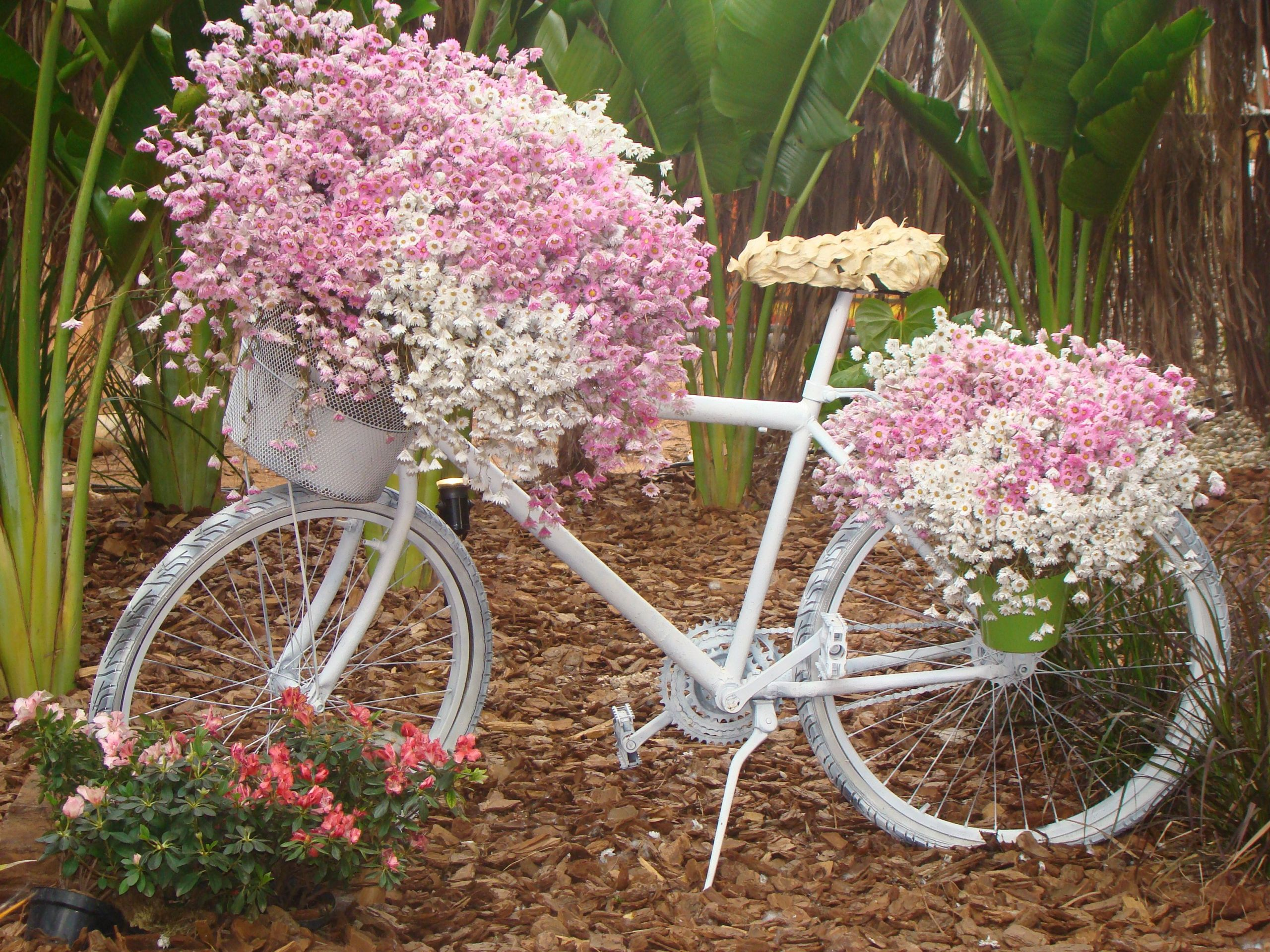 Deko Fahrrad Garten Schön Pin Von Ilona Fernau Auf Deko