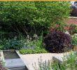 Deko Frosch Garten Inspirierend 38 Luxus Hochbeet Garten Das Beste Von