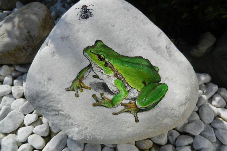 Deko Frosch Garten Inspirierend Frosch Mit Fliege Auf Stein Etwas Anspruchsvoller Für Den