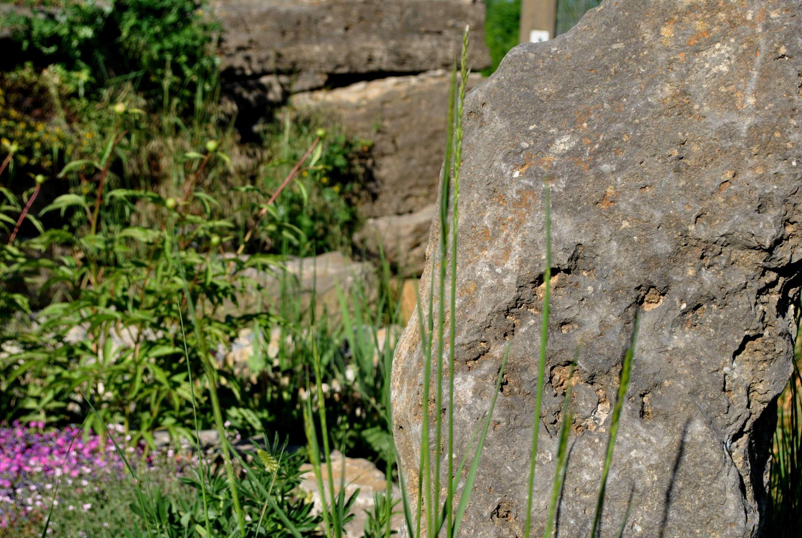 garten und landschaftsbau schon stein muller gala bau of garten und landschaftsbau scaled