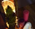 Deko Garten Weihnachten Best Of Baumrinde Deko Wald