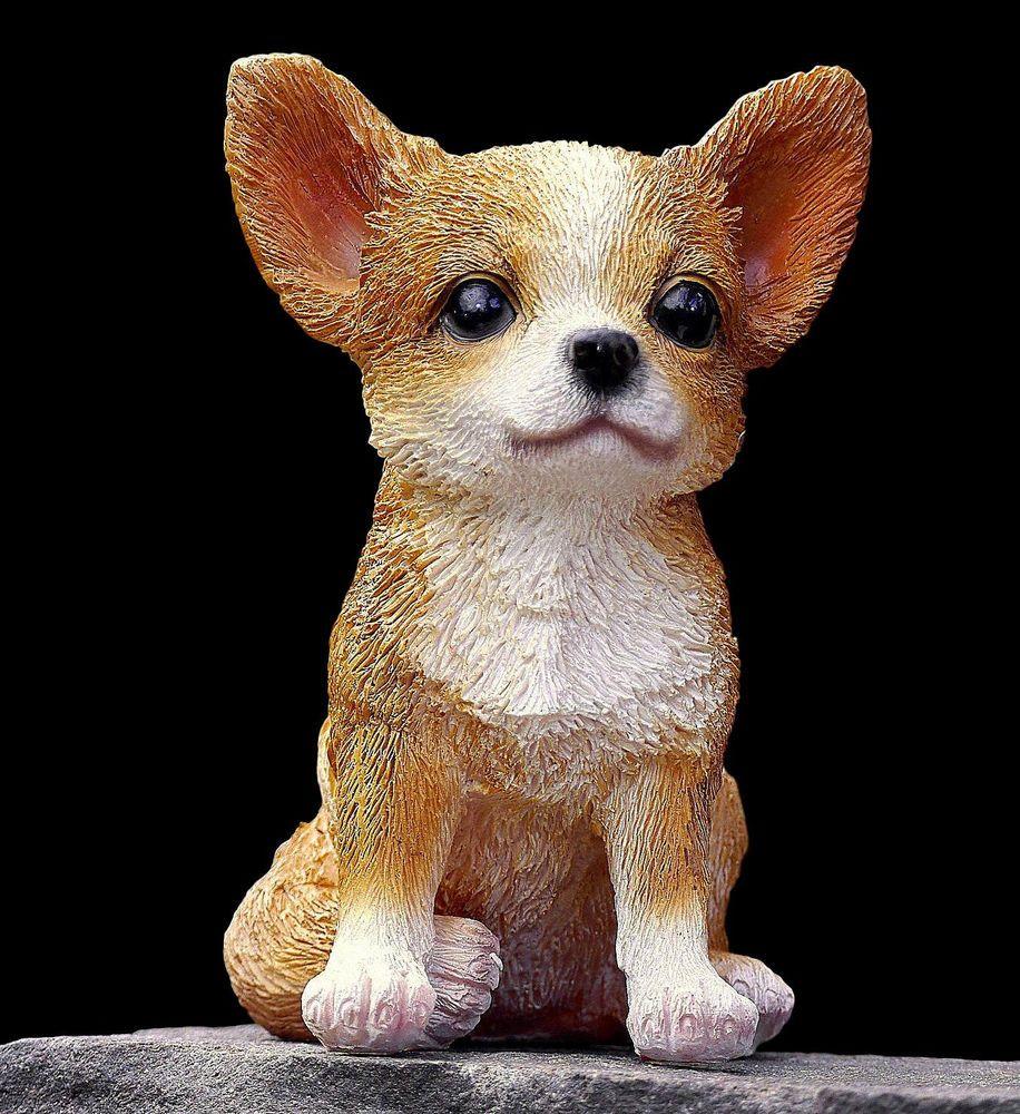 Deko Hund Garten Einzigartig Hund Deko Hunde Garten Figur Chihuahua Welpe Dekoration 3252