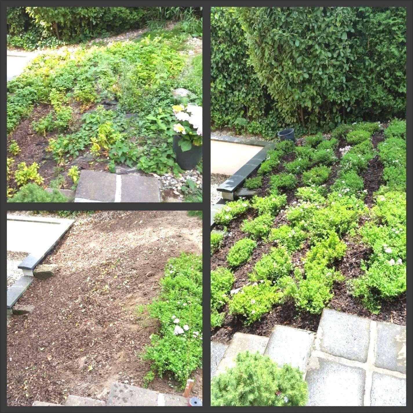 Deko Ideen Selber Machen Garten Frisch 62 Genial Blumen Ideen Garten
