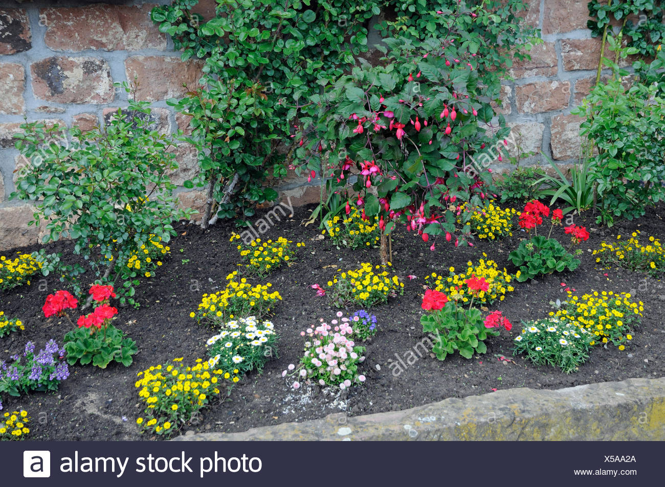 blumenrabatte rabatte blumen zierpflanzen garten park blumenbeet stadtmauer mauer eberbach frhling frhjahr X5AA2A