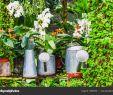Deko Mauer Im Garten Elegant Garten Deko Idee Mit Der Bewässerung Kann Im Tropischen