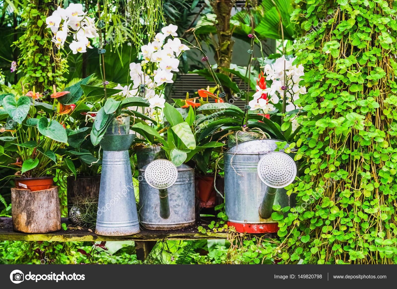 depositphotos stock photo garden decoration idea using the