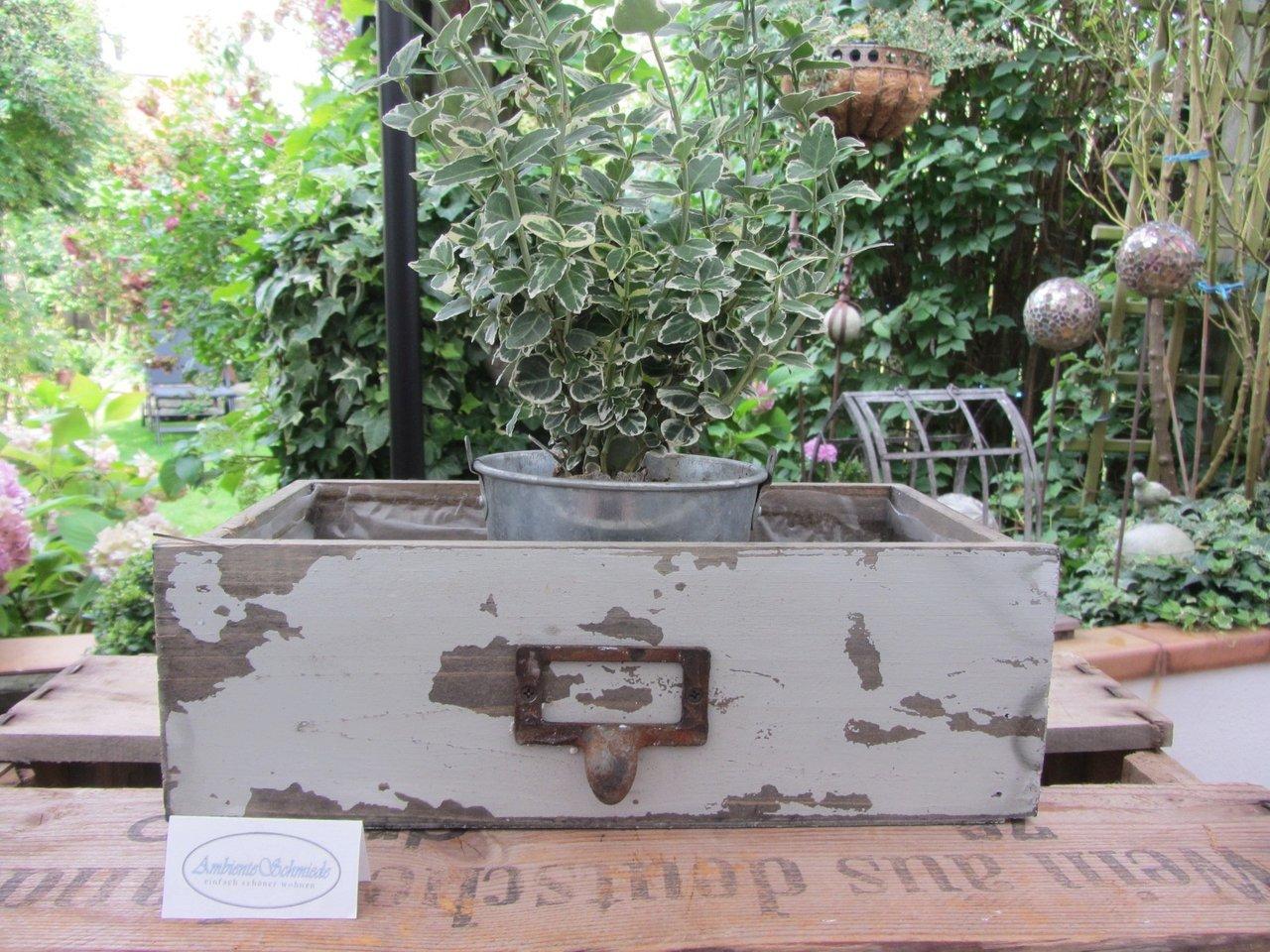 IMG 0074 Holz Pflanz Schublade zum bepflanzen Deko Garten Vintage Shabby ambienteschmiede JPG