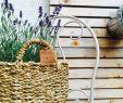 Deko Stuhl Garten Neu Garten Deko Stuhl Korb Lavendel
