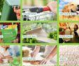 Deko Vögel Garten Schön Yantai Bagease Packaging Products Co Ltd Bagplastics Cn