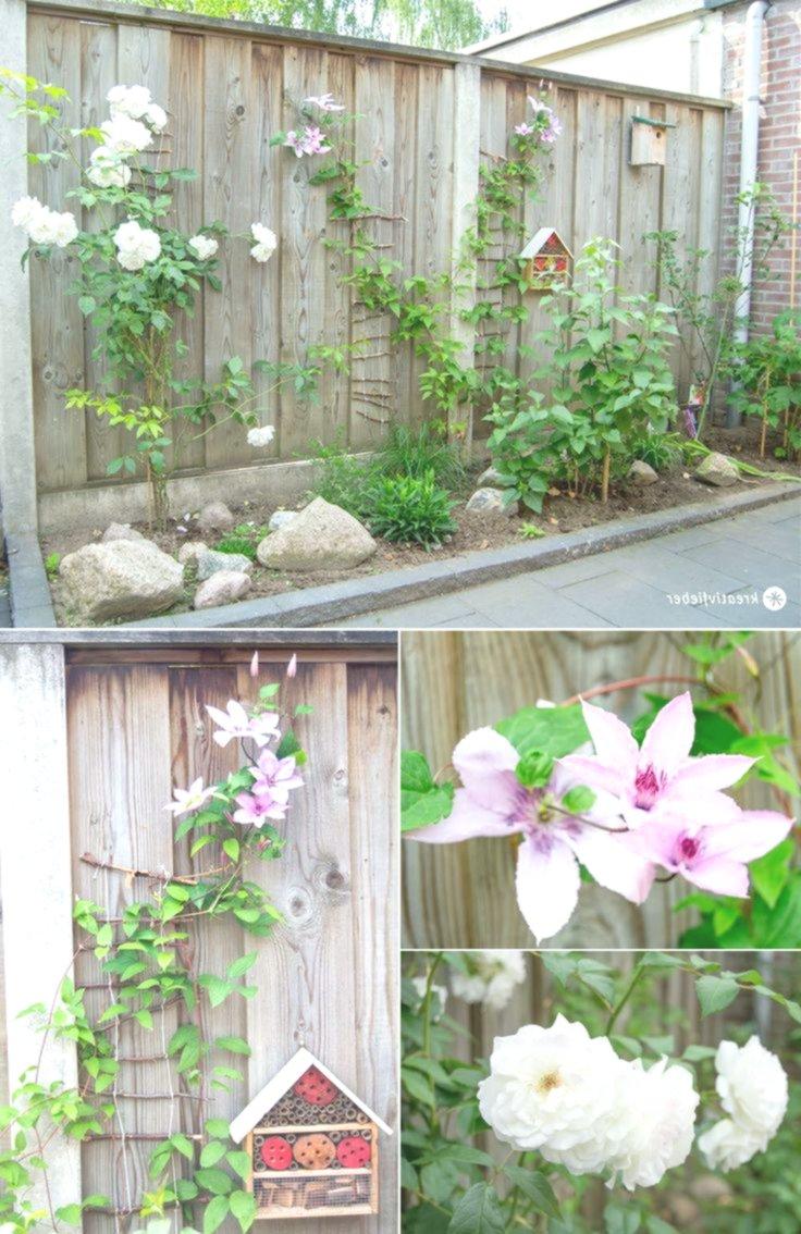 DIY für den Garten selbstkletternde Kletterhilfe für Pflanzen