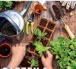 Dekokugeln Garten Rost Luxus Baywa Gartenkatalog Kw10 by Russmedia Digital Gmbh issuu