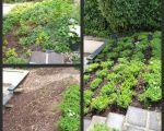 32 Best Of Dekokugeln Garten Rost