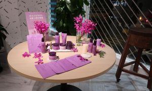 32 Elegant Dekoration Online Shop Günstig